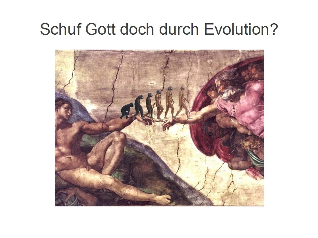 Evolution Schöpfung